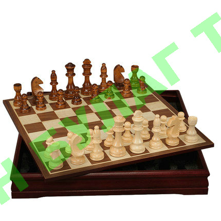 Chess and Checker set for students
