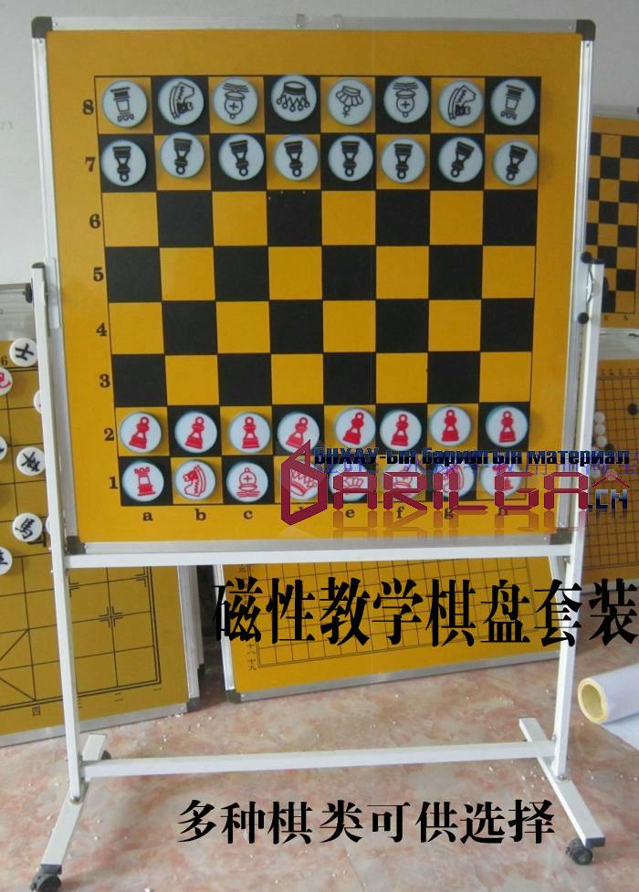 Chess set for demonstrating